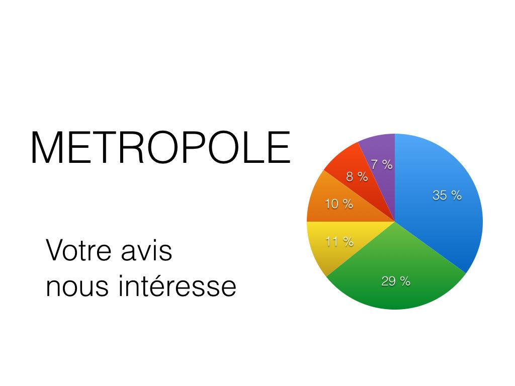 Comment voyez-vous la Métropole ?